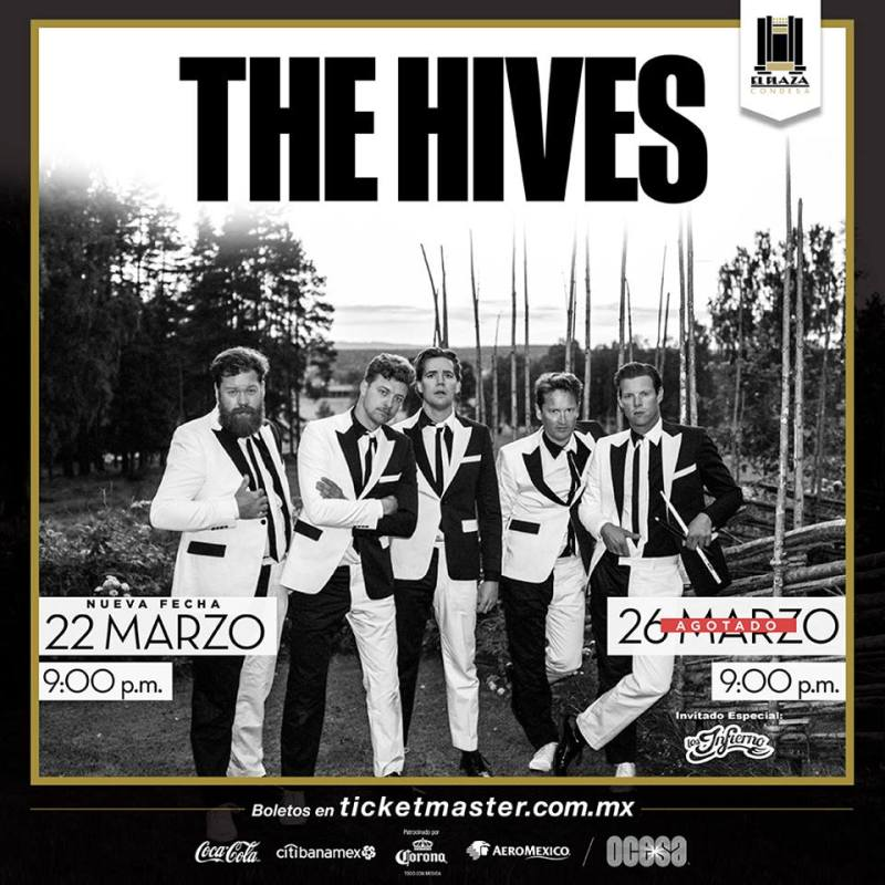 The hives.jpg